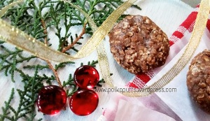No bake cookies recipe Peanut butter & oats cookies recipe Christmas recipes Polkapuffs Polkapuffs recipes Easy cookie recipes for Christmas Christmas menu Cookie ideas Oat no bake cookies