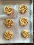 Peanut Butter & Choco Chip Cookie Easy recipe for Peanut butter cookies Polkapuffs recipe
