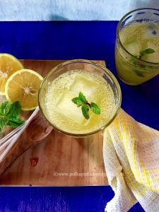 Spiced Citrus Spritzer - perfect non-alcoholic thirst quencher by Polkapuffs.